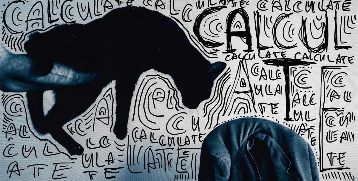 Black Cat - Calculate